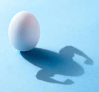 i26 hyperimmune egg